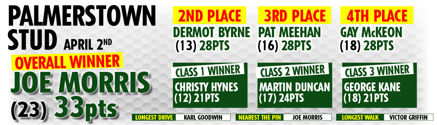 palmerstown_results_2016